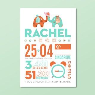 Typographic Baby Stats Birth Announcement